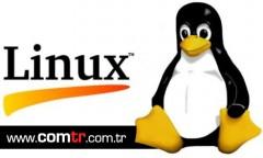 Linux Hosting Extra Trafik
